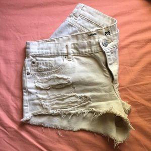 Flirty festival shorts